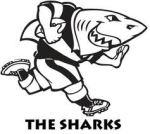 sharks1