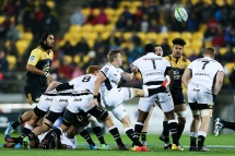 WELLINGTON, NEW ZEALAND - JULY 23: Michael Claasens of the Sharks during the Super Rugby Quarterfinal match between the Hurricanes and the Sharks at Westpac Stadium on July 23, 2016 in Wellington, New Zealand. (Photo by Hagen Hopkins/Getty Images)